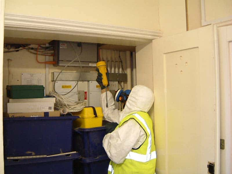 The Asbestos Man – Better Safe Than Exposed – Luton Bedfordshire
